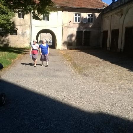 Wyświetl galerię VII Pielgrzymka osób niepełnosprawnych- ŚDS w Henrykowie